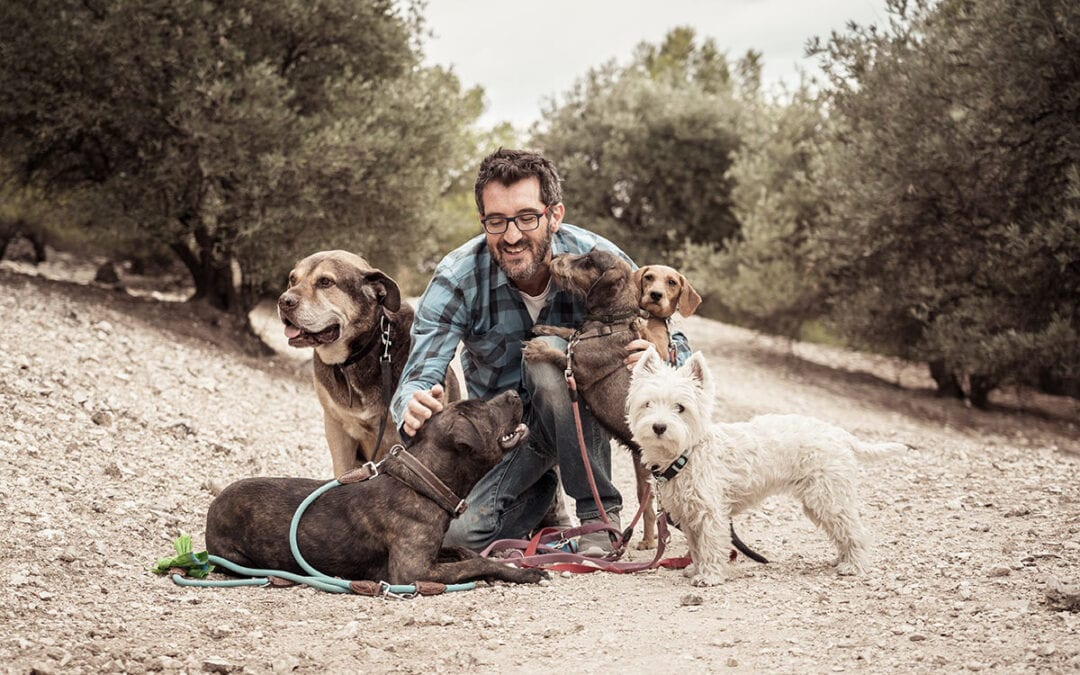 What to Look for in a Pet Professional